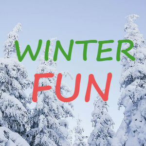 winter fun in tri-cities