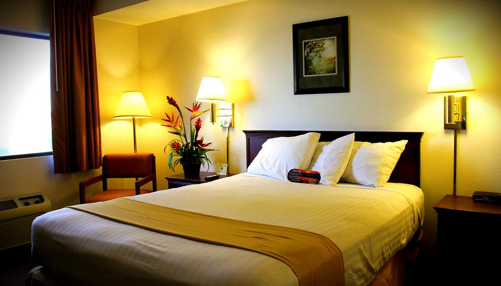 single room clover island inn